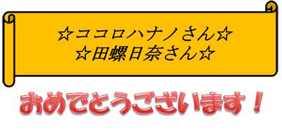 15-07月定例審査会03