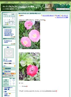 ハーブ・プロジェクトブログ